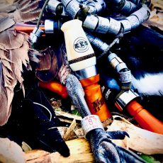 Migration Ender Goose Call